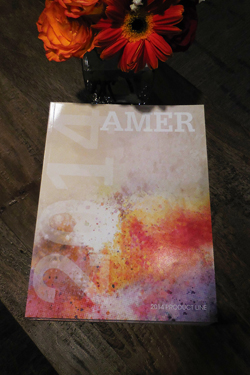 Amer released its 2014 catalog at Americasmart during the July market.