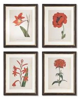 Napa Williamsburg prints, spring floral studies