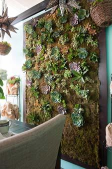 The succulent wall