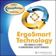The Carpenter ErgoSmart logo