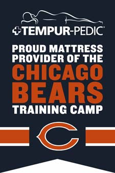 Tempur-Pedic Bears