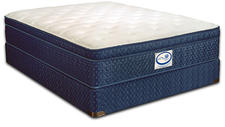 Spring Air will introduce aggressively priced specialty mattresses in the Sleep Sense brand, which has been repositioned as the company's ultimate back-supporter line. springair.com