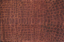 Momeni?s Serengeti is a group of rugs inspired by the African outback and hand tufted of wool. momeni.com