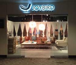 Joybirds New Four Studio Brand Aimed At Wholesale Market