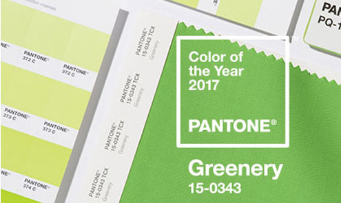 The Pantone Color Of The Year 2017 Has Been Announced