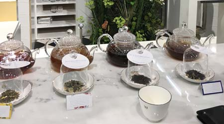 Wedgwood tea conservatory_Ambiente
