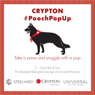 Crypton Pooch Pop-Up