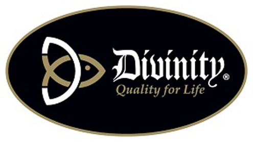 divinity boutique logo