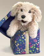 "The Gift Box Puppy from Folkmanis comes attached to a 5"" x 5"" box and pops up when the lid is removed. A cat version also is available, $22, (800) 654-8922."