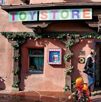 Start a Toy Store