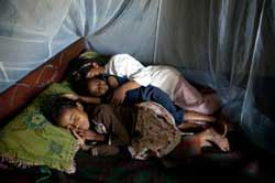 A family sleeps under a bed net that offers protection from mosquitoes that could be bearing malaria.