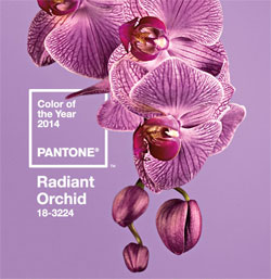 Pantone Radiant Orchid Color of the Year